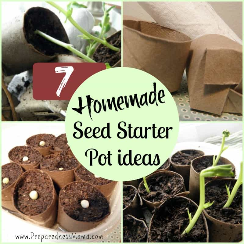 10 Ways To Style Your Very Own Vegetable Garden: 7 Ways To Make Homemade Seed Starter Pots