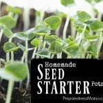 7 Ways to Make Homemade Seed Starter Pots