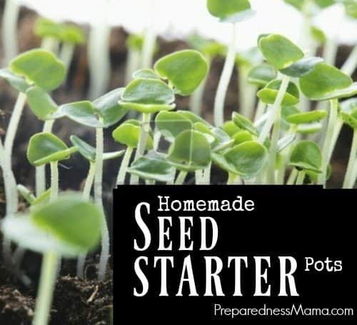 Homemade seed starter pots | PreparednessMama
