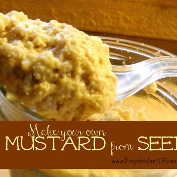 Make homemakde mustard from seeds | PreparednessMama
