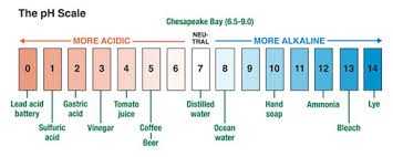the pH Scale courtesy of chesapeakquarterly.net