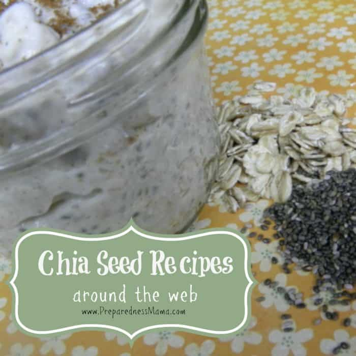 Chia Seed Recipes Around the Web