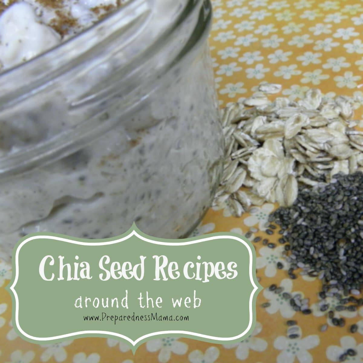 Chia Seed recipes around the web | PreparednessMama