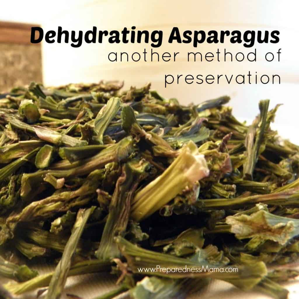 Detailed directions for dehydrating asparagus: Another method of preservation. | PreparednessMama