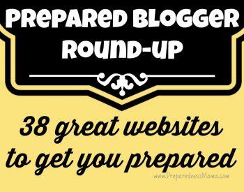 Preparedness Blogger Round-up: 38 Great Websites to Get You Prepared   PreparednessMama