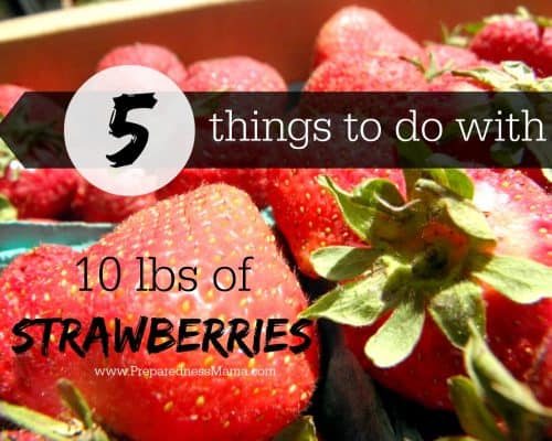 Preserve Strawberries - 5 Things to do with 10 pounds of Strawberries | PreparednessMama