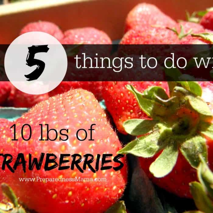 5 Ways to Preserve Strawberries
