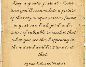 9 Reasons to keep a garden journal | PreparednessMama