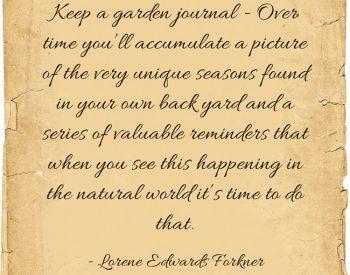 9 Reasons to keep a garden journal | PreparednessMama