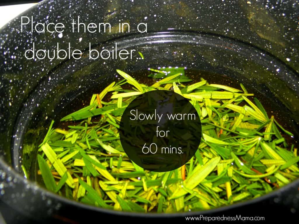 Slowly warm the oil and herbs in a double boiler. You are not cooking, only warming | PreparednessMama