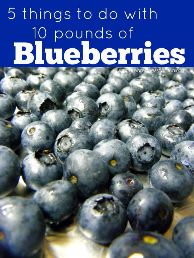 5 Ways to Preserve 10 Pounds of Blueberries. Click through to see instructions on preserving blueberries including freezing, saucing and making vinegar | PreparednessMama