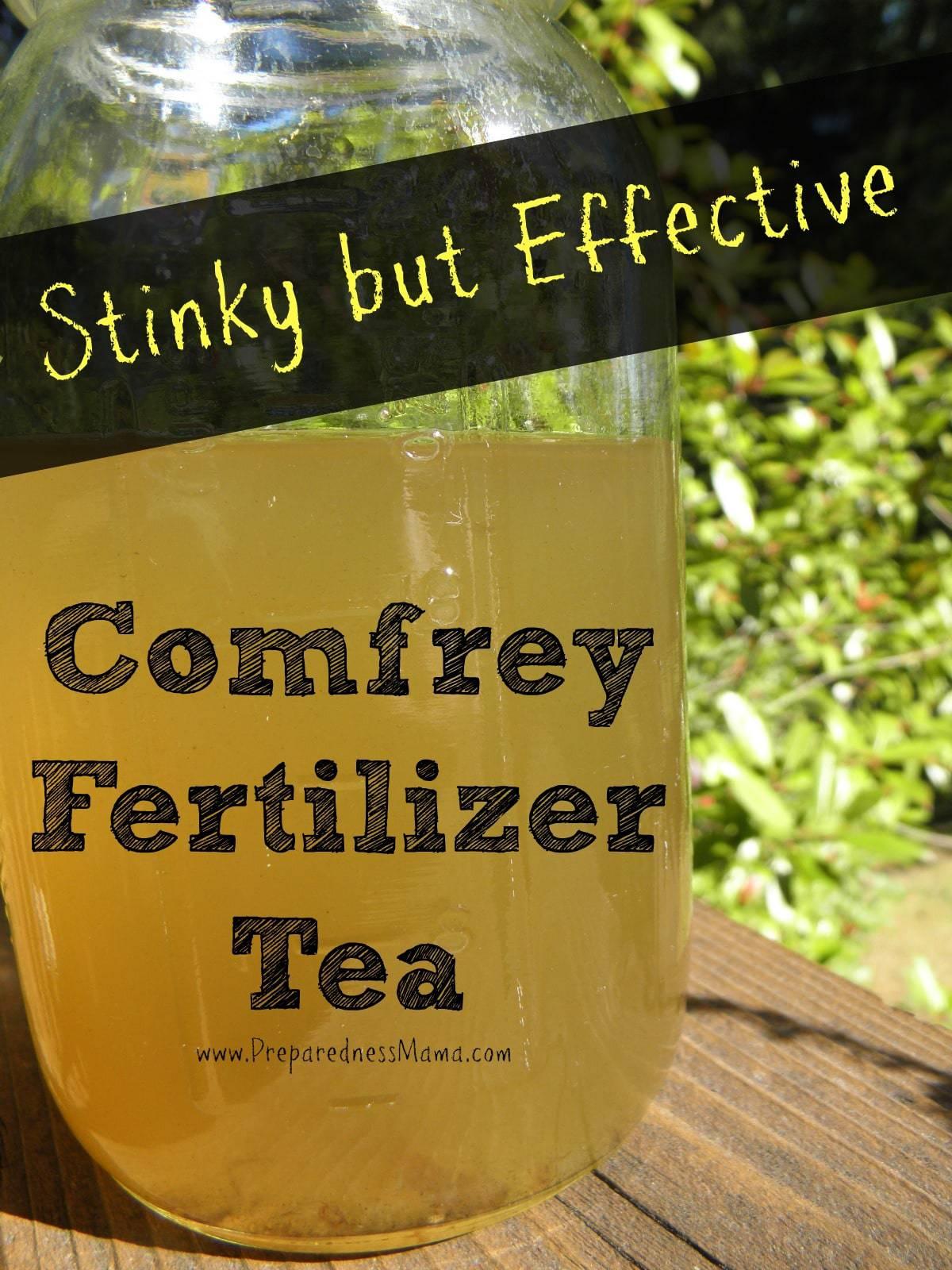 Stinky But Effective Make Comfrey Fertilizer Tea