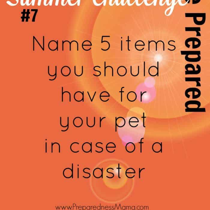 Be Prepared Summer Challenge Week 7 - Pets in Disasters. Name 5 Items you should have for your pet in case of a disaster 1. Collar & Leash | PreparednessMama