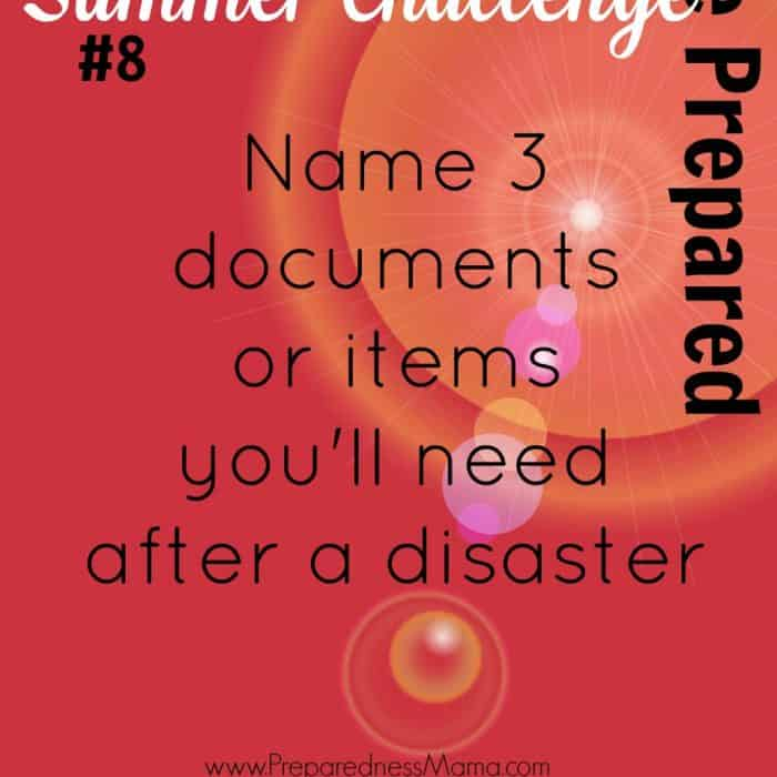 Be Prepared Summer Challenge Wk 8 – Vital Documents