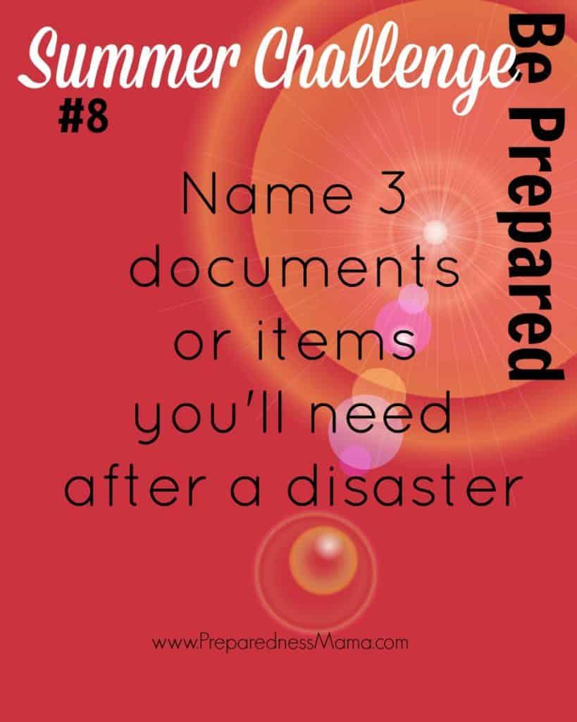 Be Prepared Summer Challenge Week 8 - Saving Documents | PreparednessMama