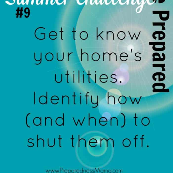 Be Prepared Summer Challenge Wk 9 – Utility Shut Off
