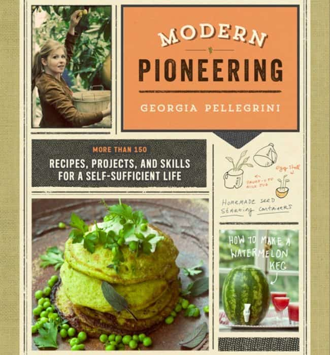 Modern Pioneering: A Review