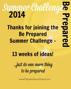 Join the Be Prepared Summer Challenge and do just one more thing to be prepared | PreparednessMama