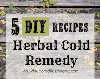 5 DIY herbal cold remedy recipes to make ahead for cold and flu season | PreparednessMama