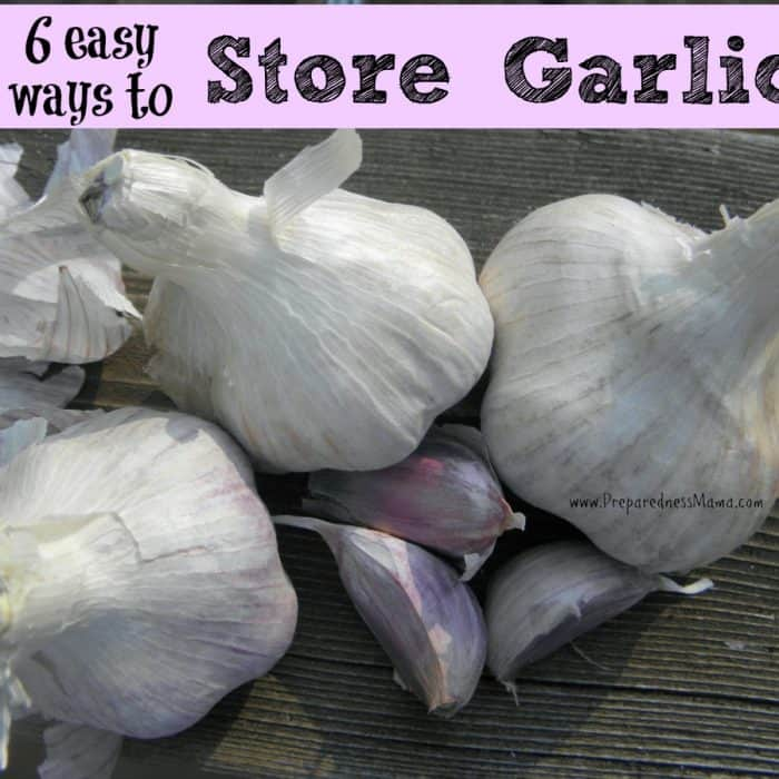 6 Easy Ways to Store Garlic for the Winter | PreparednessMama