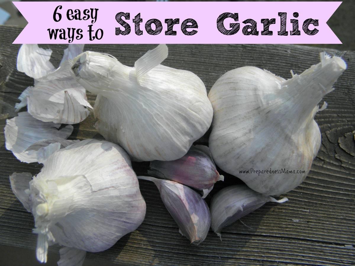 6 Easy Ways To Store Garlic For The Winter Preparednessmama