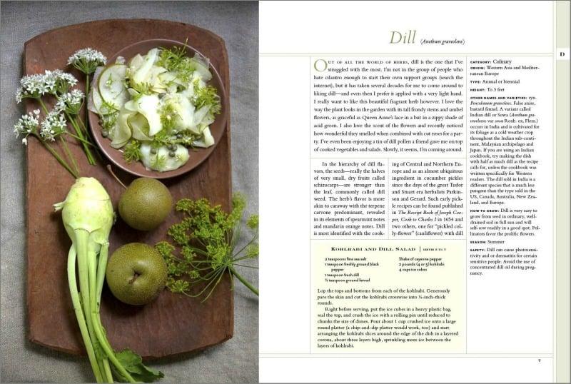 Dill page in The New American Herbal | PreparednessMama