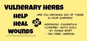 Vulnerary - Herbs that help heal wounds | PreparednessMama