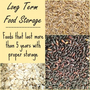 The Long Term Food Storage Page at PreparednessMama