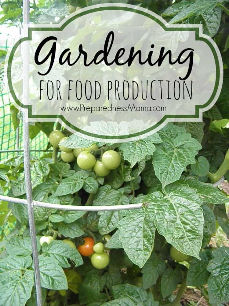 Gardening for Food Production | PreparednessMama