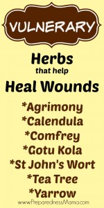 Herbs that heal wounds from The New American Herbal by Stephen Orr | PreparednessMama