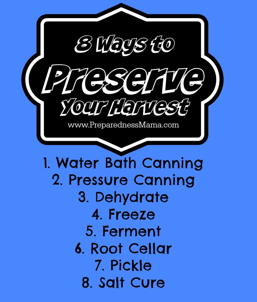 8 Preservation Methods to try | PreparednessMama