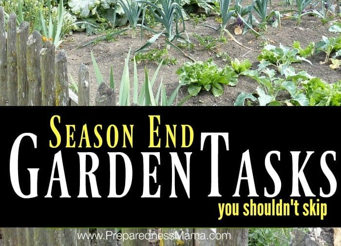 4 Season End Garden Tasks You Shouldn't Skip