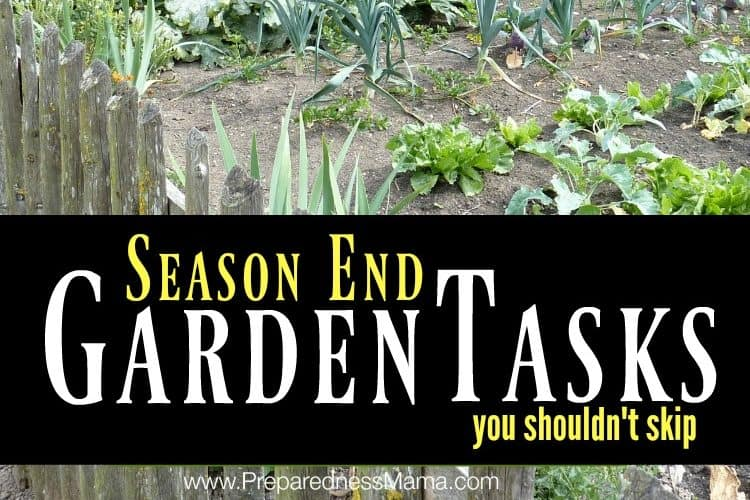 4 Season End Garden Tasks you Shouldn't skip   PreparednesszMama