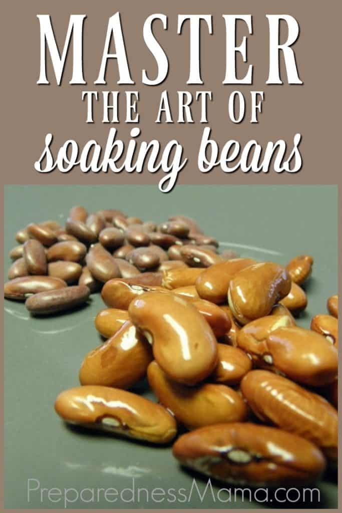 Beans in your daily diet just makes sense. Nutritionally and financially, beans have a lot to offer your family. Master the art of soaking beans | PreparednessMama