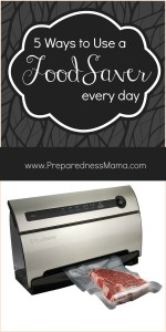 5 Ways to Use a FoodSaver Everyday, PLUS enter to win one of your own | PrepaprednesMama