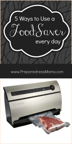 5 Ways to Use a FoodSaver Every day, PLUS enter to win one of your own | PrepaprednesMama