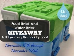 FoodBrick & WaterBrick for easy to handle storage containers | PreparednessMama