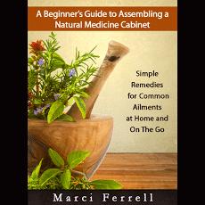 The Beginners Guide to a Natural medicine Cabinet | PreparednessMama