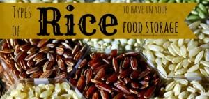 Types of Rice to have in food storage   PreparednessMama