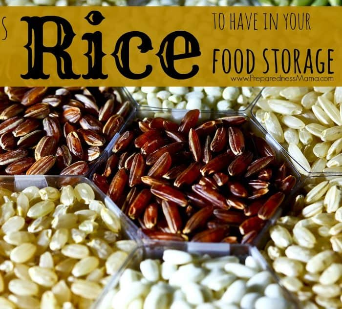 Types of Rice to Have in Your Food Storage