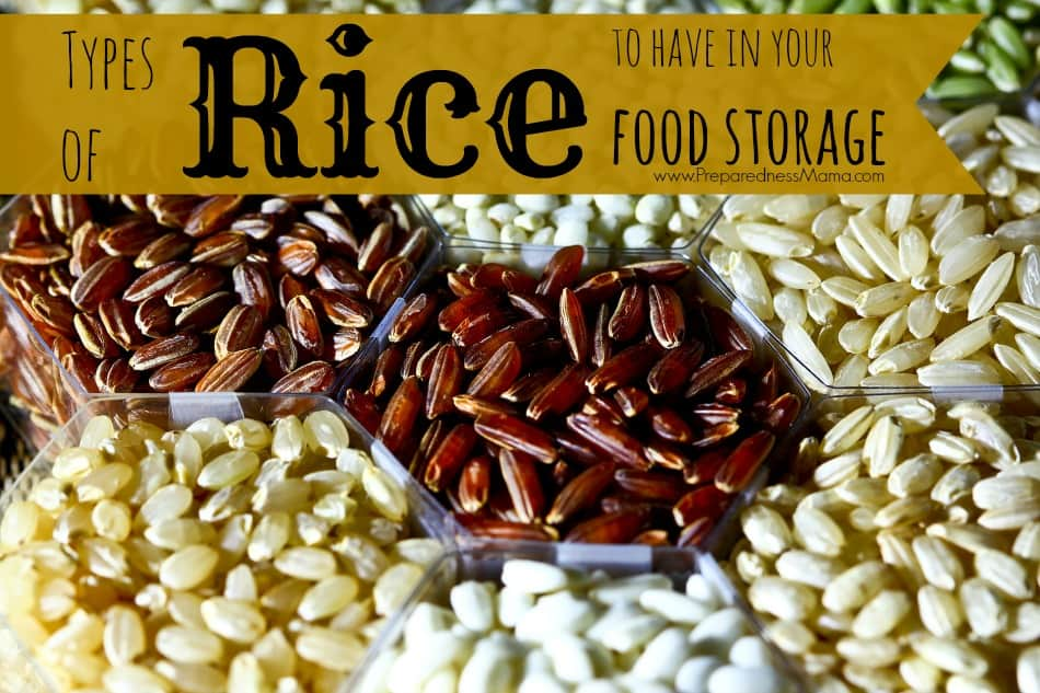 What are thry types of rice to have in food storage? Find out what kind to store and how long it will last  PreparednessMama