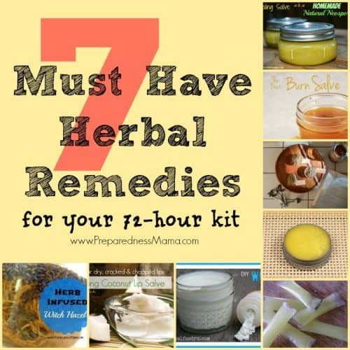 7 Must have Herbal Remedies for Your 72-Hour Kit: An Herbal Recipe Round-up | PreparednessMama