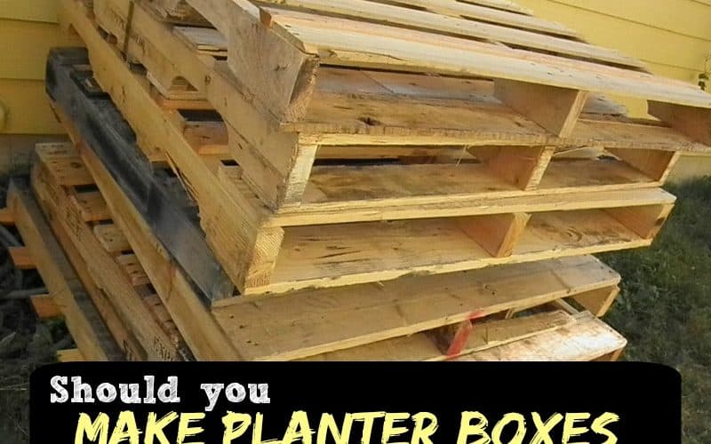 Pallet Safety: Should you make planter boxes from old pallets? Yes, if you know these tips   PreaprednessMama