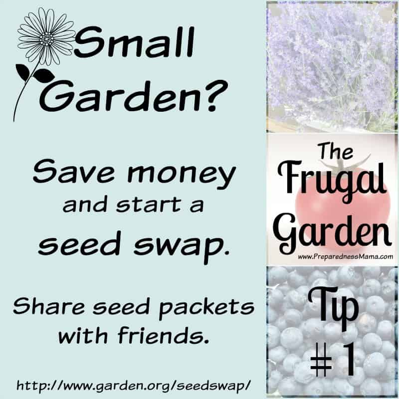 Frugal Gardening Tip #1: How much seed do you need? Start a seed swap with friends to save money | PreparednessMama