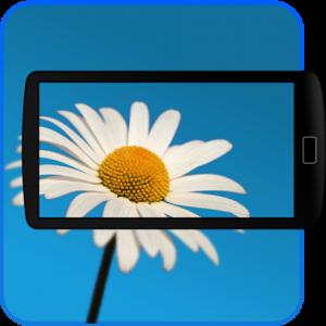 FlowerChefker online plant identification app | PreparednessMama