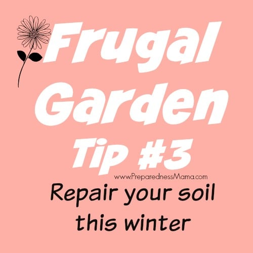 Frugal Gardening Tip #3 - Repair your soil this winter | PreparednessMama