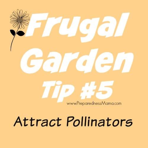 Frugal Gardening Tip #5 - Attract Pollinators | PreparednessMama