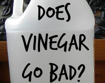 Does vinegar go bad? An other pressing vinegar questions | PreparednessMama
