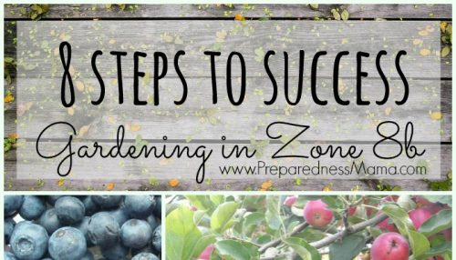 8 Steps to Successfuly gardening in zone 8b | PreparednessMama
