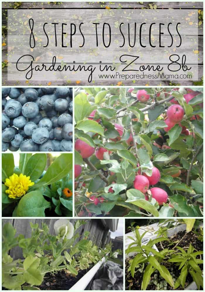 8 Steps to Successfully Gardening in Zone 8 | PreparednessMama